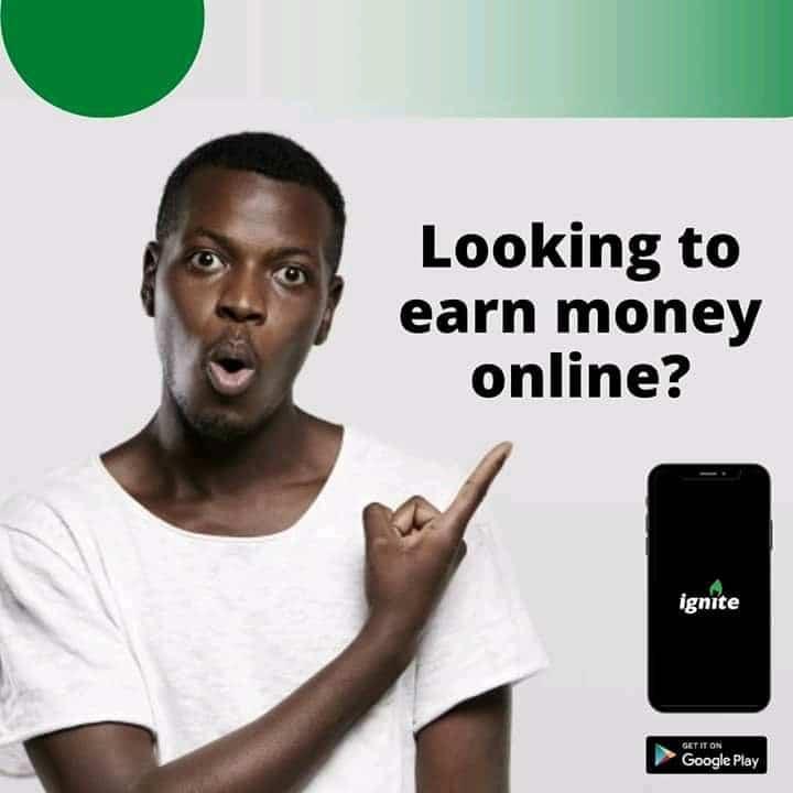 Make Money Nigeria Ignite Survey