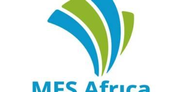 Mfs Africa
