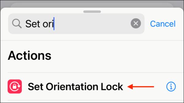 Select Set Orientation Lock Action