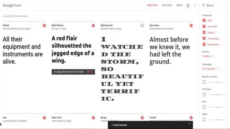 Google Fonts Service
